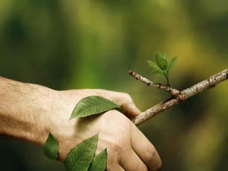 Pubblicità ed ecologia: buste biodegradabili personalizzate